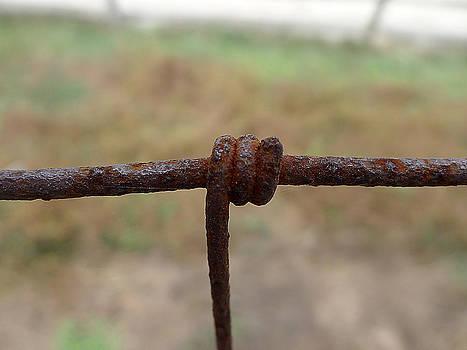 Richard Reeve - A Twist of Wire