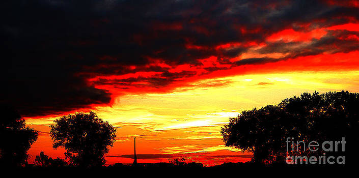 A Very Late Sun by Kim Pate