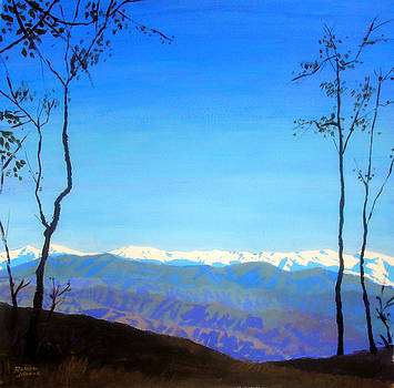 A View of the Himalayas by Ramesh Jhawar