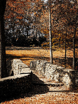 A Walk Along the Old Stone Path by Lincoln Rogers
