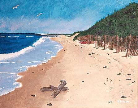 A Walk In Nantucket by Cynthia Morgan