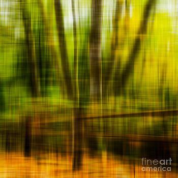 A Nature Walk in Autumn by Emilio Lovisa