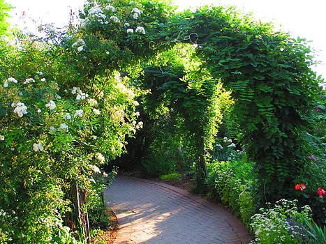 A Walk in the Garden by Elaine Haakenson