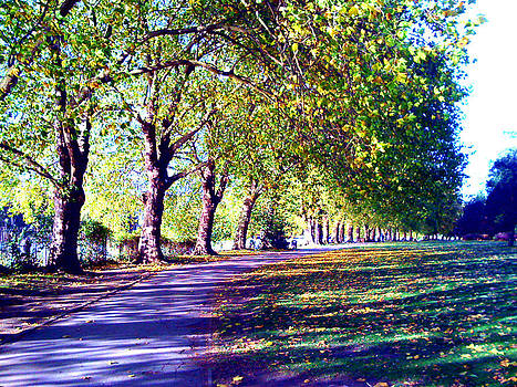 A Walk in the Park by A Dx