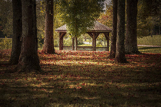 A Walk In The Park by Cindy Rubin