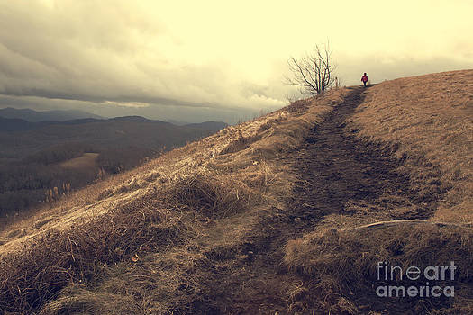 A Walk on Max Patch by Jaclyn Burns