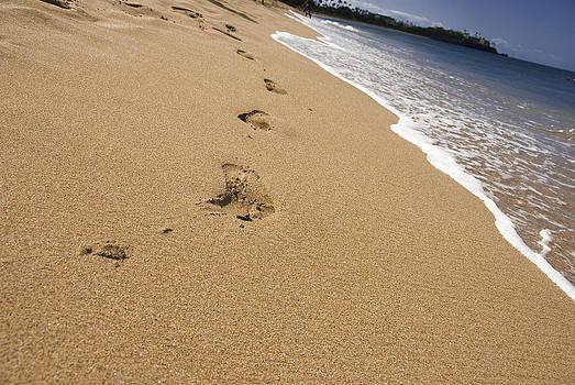 A Walk on the Beach by Chris Ann Wiggins