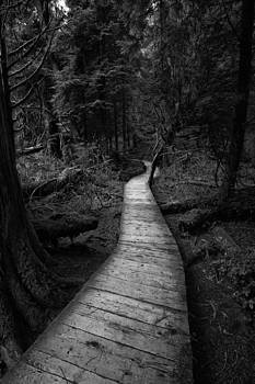 A walk on the Boardwalk by Colin Sands