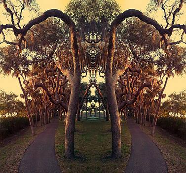 Steve Sperry - A Walk On the Not So Wild Side