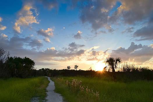 A Walk With You... by Melanie Moraga