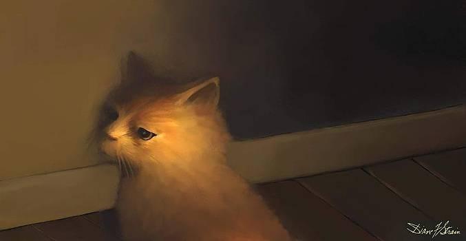 A Warm Corner for Kitty   No.1 by Diane Strain