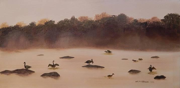 A Wetland Reville by William McCutcheon