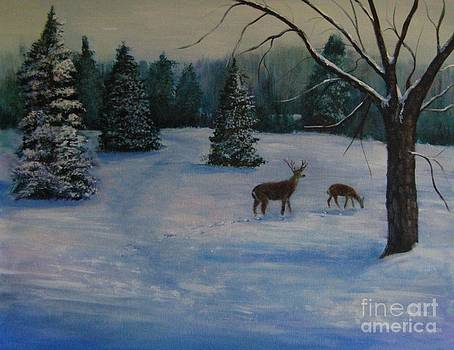 A Winter Scene by Jana Baker