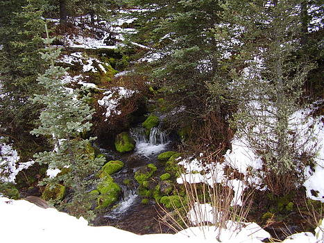 A Winter Scene by Yvette Pichette