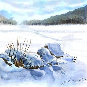 A Winter Study in Blues by Joan A Hamilton