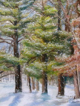 A Winter Wonderland by Kathryn Rose