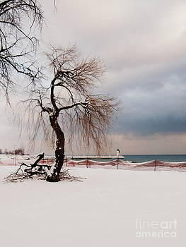 A Winter's Day on Lake Ontario Canada by Avis  Noelle