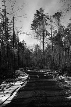 Nina Fosdick - A Winters Walk