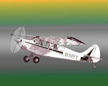 Jack Pumphrey - A1A Husky Aviat Airplane