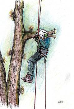 AArborist Tree surgeon stihl 020T by Gordon Lavender