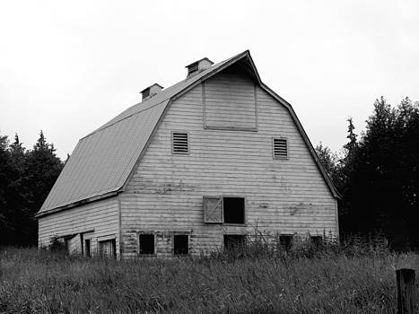 Art Block Collections - Abandoned Barn