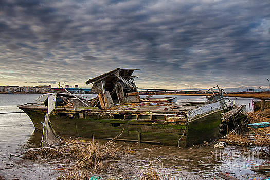 Abandoned boat in the Meadowlands by Robert Wirth