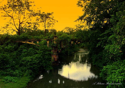 Abandoned bridge at raiwala by Salman Ravish