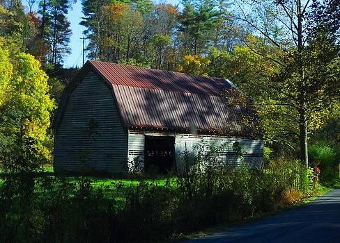 Abandoned by the Roadside by Fineartist Ellen