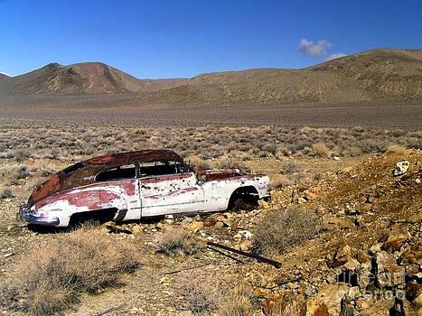 Christine Stack - Abandoned