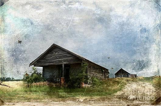 Liane Wright - Abandoned Farm Home - Kansas