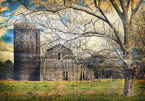 Abandoned Farm by Tara Richelle