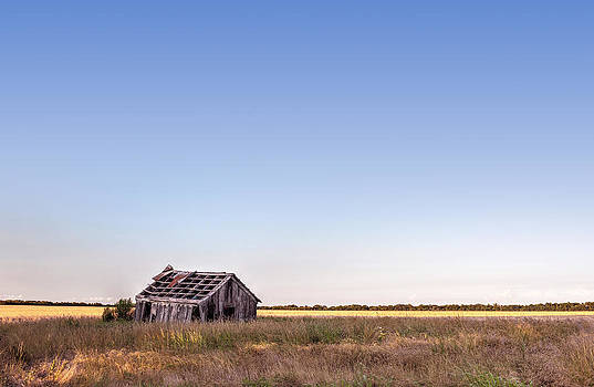 Abandoned Farmhouse in a Field by Todd Aaron