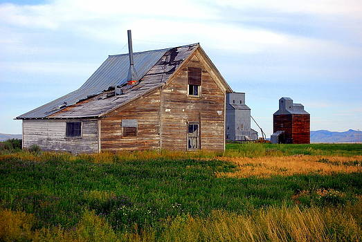 Abandoned Farmhouse by Mamie Gunning