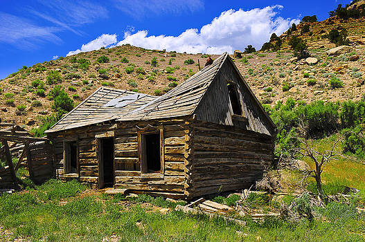Abandoned Log Cabin by Donald Fink