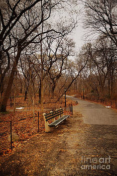 Abandoned Park Bench by Susan Gary