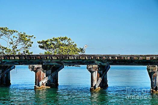Carmen Del Valle - Abandoned Railroad At Boca Grande 2