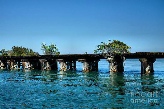 Carmen Del Valle - Abandoned Railroad At Boca Grande 4