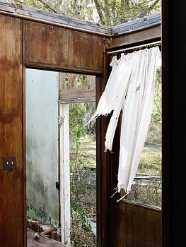 Randi Kuhne - Abandoned