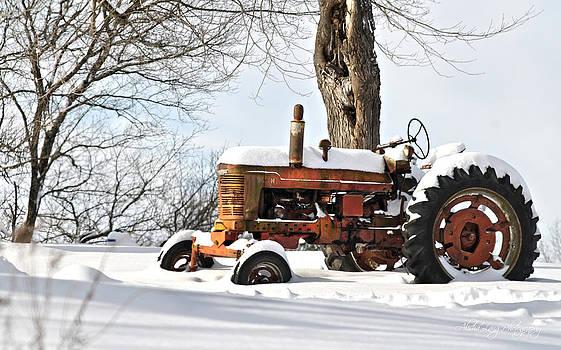Abandoned Tractor by Alisha Lang