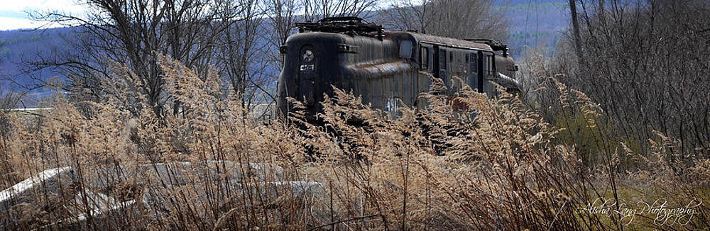 Abandoned Train by Alisha Lang