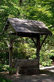 Maria Urso  - Abandoned Well