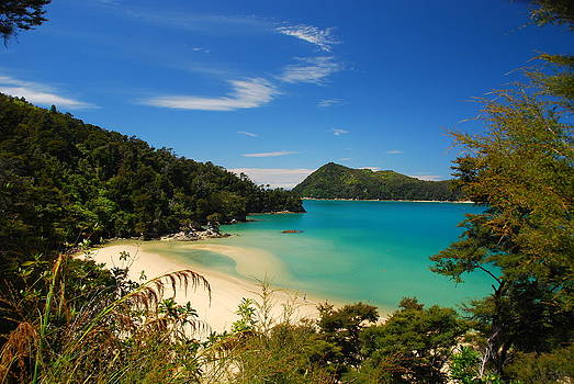 Abel Tasman National Park Landscape by Cascade Colors