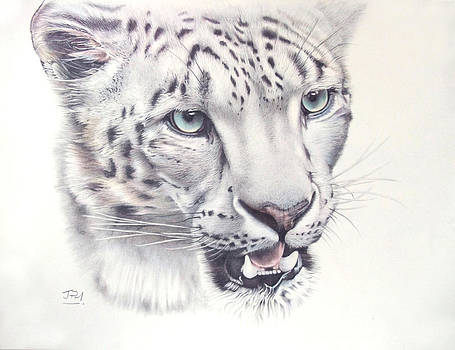 Above the Clouds - Snow Leopard by Jill Parry