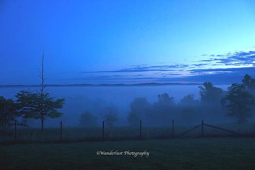 Above the Fog by Paul Herrmann