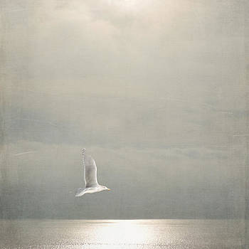 Above the Sea by Sally Banfill