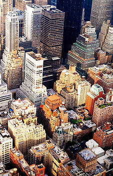 Above the Skyscrapers - New York City by Vivienne Gucwa
