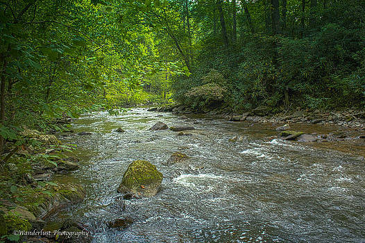 Abram's Creek GSMNP by Paul Herrmann