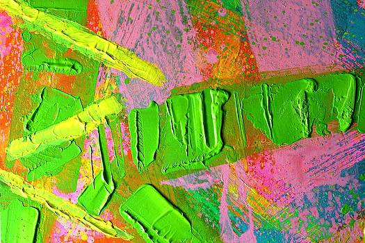 Abstract 6814 Diptych Cropped  XIII by John  Nolan