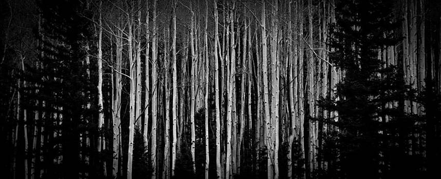 Abstract Aspens by Atom Crawford