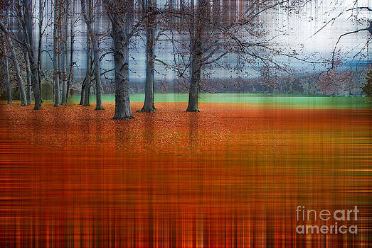Hannes Cmarits - abstract atumn II